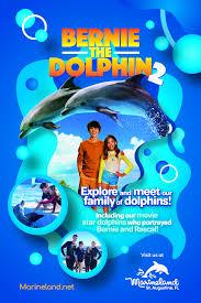download bernie the dolphin 2 2019 from moviecoreph